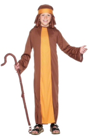 Boys Brown Shepherd Fancy Dress Costume 2