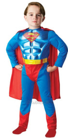 Boys Metallic Superman Fancy Dress Costume