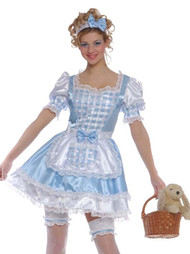 Ladies Dorothy Fancy Dress Costume 3