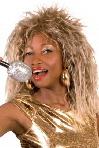 Ladies Tina Turner Fancy Dress Wig Fancy Me Limited