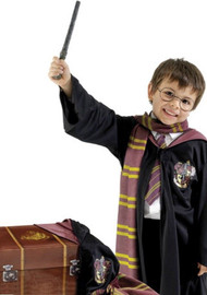 Boys Harry Potter Trunk + Fancy Dress Costume