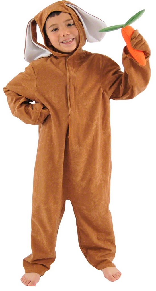 465c28fe526 Child s Brown Rabbit Fancy Dress Costume. Image 1 Click to view full size  image