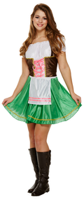Ladies Beer Girl Fancy Dress Costume