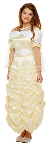 Ladies Golden Princess Fancy Dress Costume