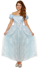 Ladies Lost Shoe Princess Fancy Dress Costume