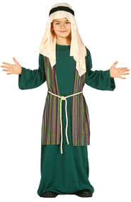 Boys Green Shepherd Fancy Dress Costume