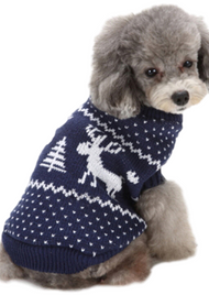 Dog Blue Festive Sweater