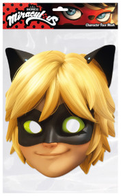 Child's  Cat Noir Fancy Dress Mask