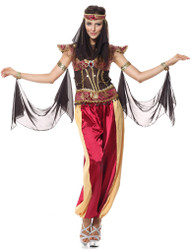 Ladies Belly Dancer Fancy Dress Costume