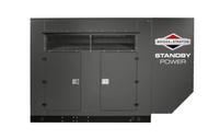Briggs & Stratton 80020 150kW 1ph-120/240V NG Generator
