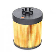Kohler GM48731 Oil Filter