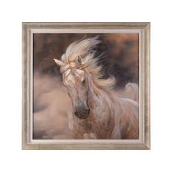 Wingka's Stallion