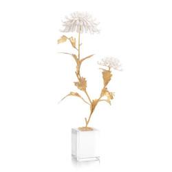 Avignon Chrysanthemums