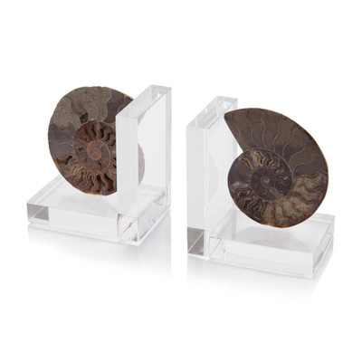 Set of Two Ammonite Bookends