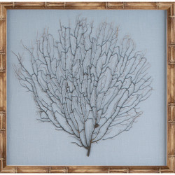 Natural Bamboo Sea Fan