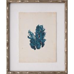Mini Turquoise Coral V