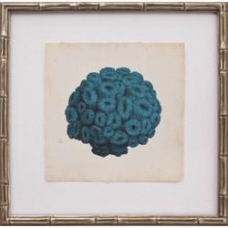 Mini Turquoise Coral I