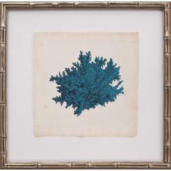 Mini Turquoise Coral II