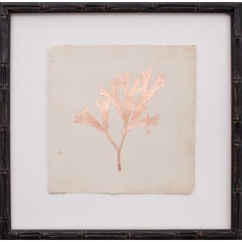 Copper Leaf Seaweed III