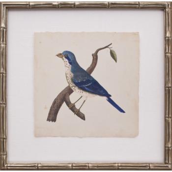 Mini Levallion Bird II