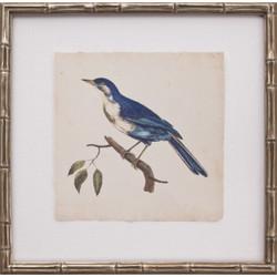 Mini Levallion Bird III