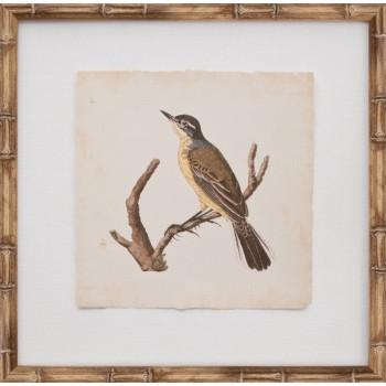Mini Nozeman Bird VI