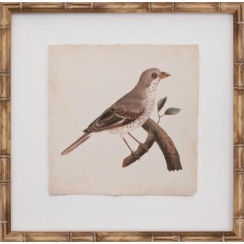 Mini De Langlois Bird II