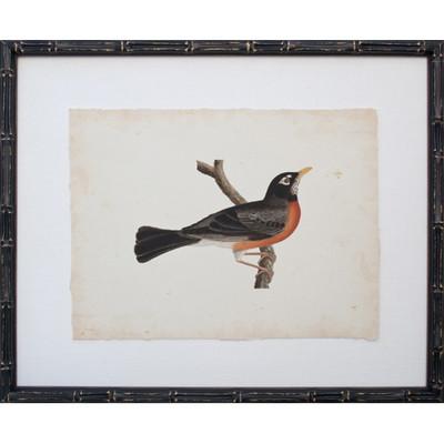 Vintage Bird III