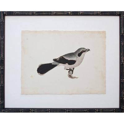 Vintage Bird IV