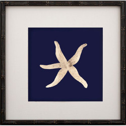 Gold Leaf Starfish I