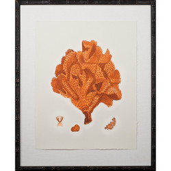 Tangerine Coral Giclee IV