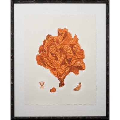 Tangerine Coral Giclee IV