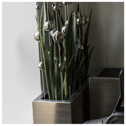 Stainless Ball Sway and Sansevieria in Stainless Rectangle Planter