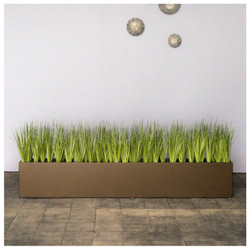 Short Japanese Grass in Custom Rectangle Planter