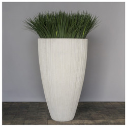 Liriope Grass in Extra Large Linea Planter