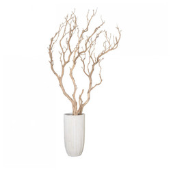 Sandblasted Manzanita Tree in Small Linea Planter