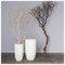 Sandblasted Manzanita Tree in Small Linea Planter image 2