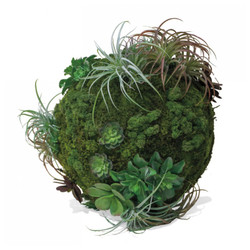California Mix Moss Sphere