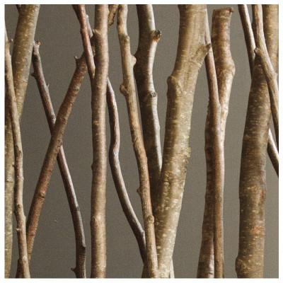Natural Alder Poles - 6'L - Set of 12