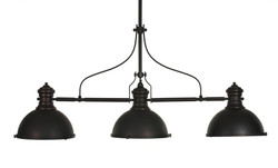 3 Light Pendant Light