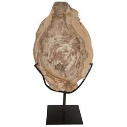 Wood Fossil w/ Stand - 12""