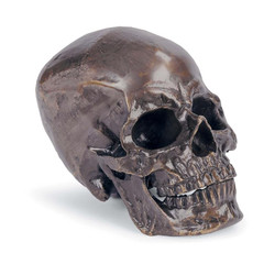 Metal Skull in Antique Bronze