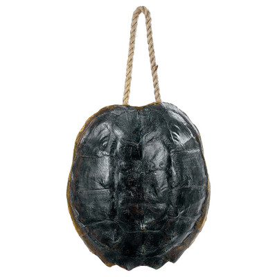 Turtle Shell Accessory - Natural Finish