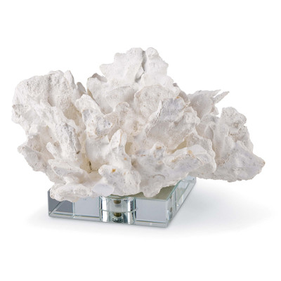 White Cabbage Coral On Crystal