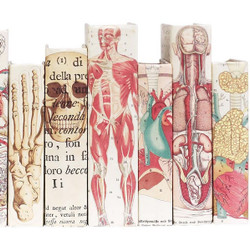 15 Vol Anatomy Collection Set