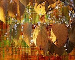 Art Classics Leaves and Dandelions III