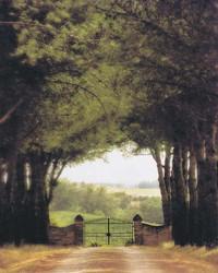 Art Classics Tuscan Gate