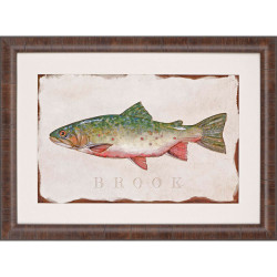 Paragon Brook Trout