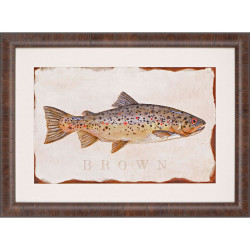 Paragon Brown Trout