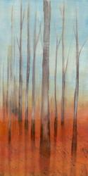 Art Classics Birch Forest II #1